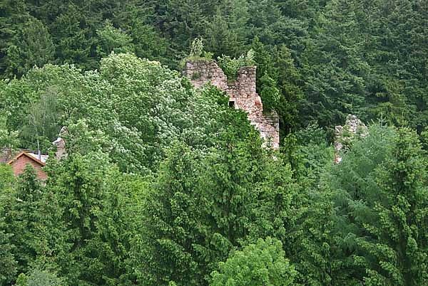 Ruine Windhaag