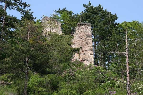 Ruine Hernstein