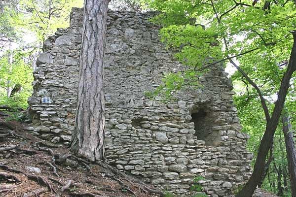 Ruine Kammerstein