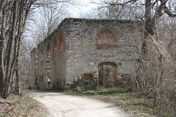 Kirchenruine Leopoldikapelle
