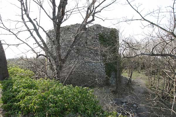 Ruine Scharfeneck bei Mannersdorf