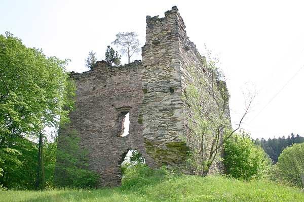 Ruine Schwarzau