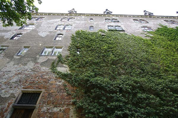Albrechtsburg-1.jpg