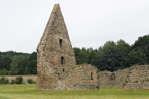 Klosterruine Altzella