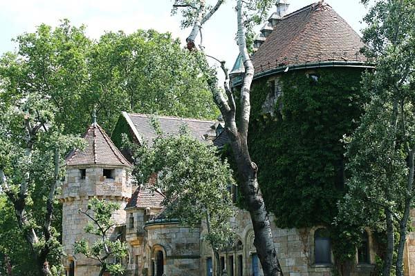 Schloss-Vajdahunyad-14.jpg