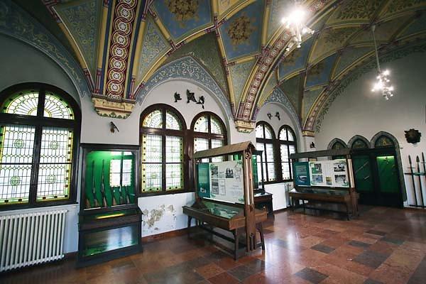Schloss-Vajdahunyad-317.jpg