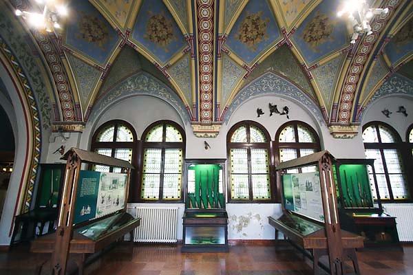 Schloss-Vajdahunyad-318.jpg
