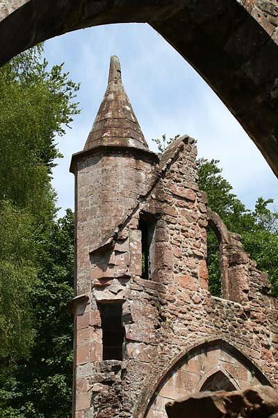 Klosterruine-Allerheiligen-48.jpg