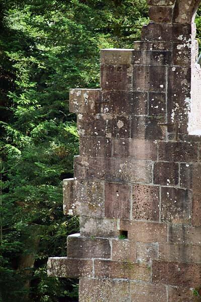 Klosterruine-Allerheiligen-141.jpg