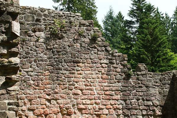 Klosterruine-Allerheiligen-152.jpg