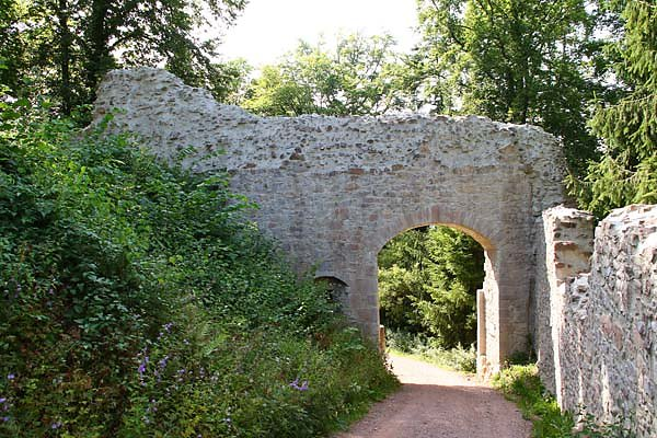 Burgruine-Hohengeroldseck-15.jpg