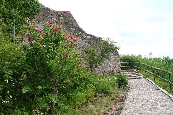 Burg-Roetteln-88.jpg
