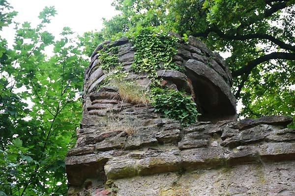 Burgruine-Freudenburg-9.jpg
