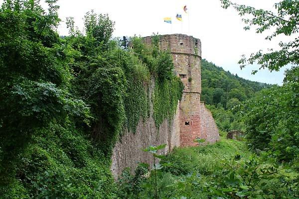 Burgruine-Freudenburg-13.jpg
