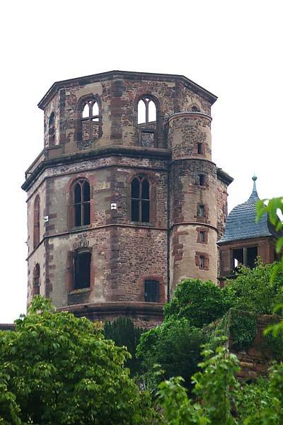 Schlossruine-Heidelberg-1.jpg