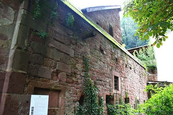 Schlossruine-Heidelberg-6.jpg