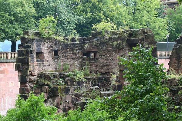 Schlossruine-Heidelberg-93.jpg