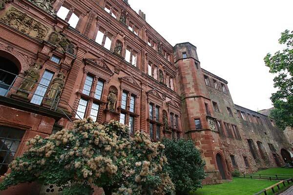 Schlossruine-Heidelberg-196.jpg
