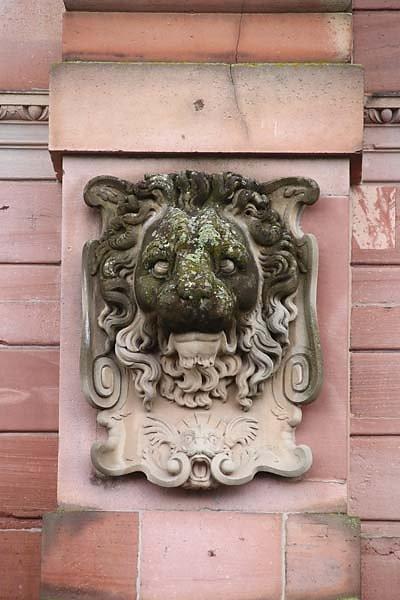 Schlossruine-Heidelberg-220.jpg