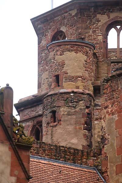Schlossruine-Heidelberg-240.jpg