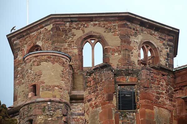Schlossruine-Heidelberg-339.jpg