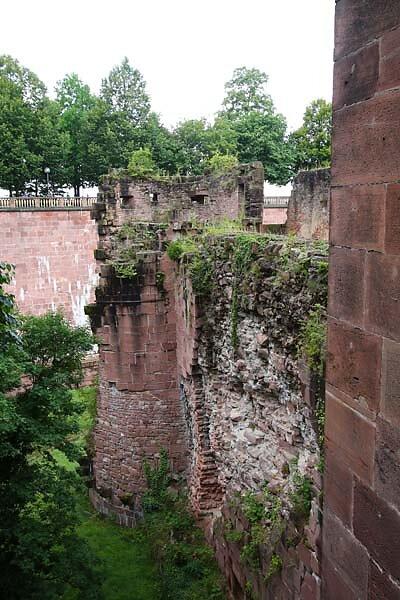 Schlossruine-Heidelberg-371.jpg