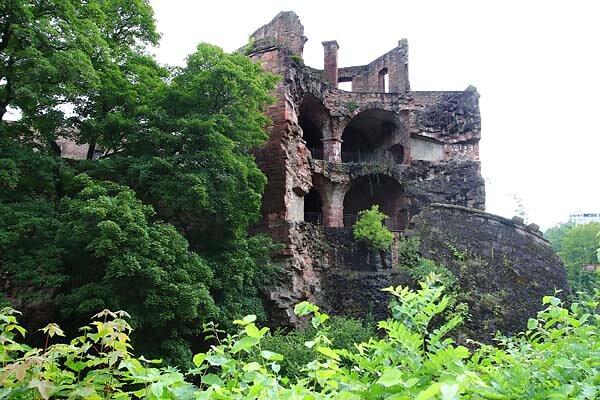 Schlossruine-Heidelberg-373.jpg