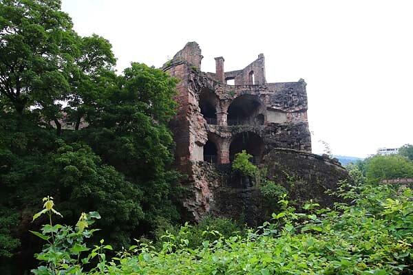 Schlossruine-Heidelberg-375.jpg