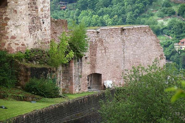 Schlossruine-Heidelberg-407.jpg