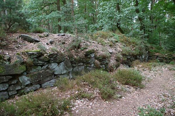 Burgruine-Heidenschuh-7.jpg
