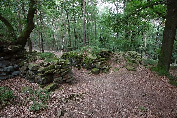 Burgruine-Heidenschuh-11.jpg