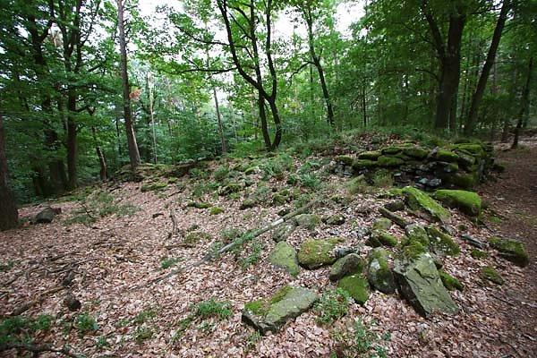 Burgruine-Heidenschuh-13.jpg