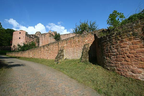 Schloss-und-Festungsruine-Hardenburg-352.jpg