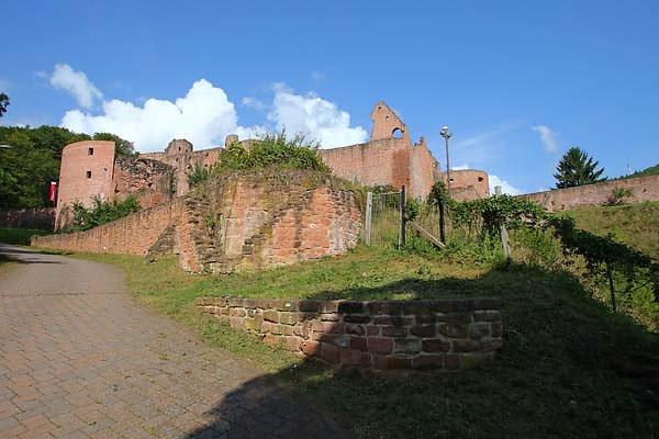 Schloss-und-Festungsruine-Hardenburg-353.jpg