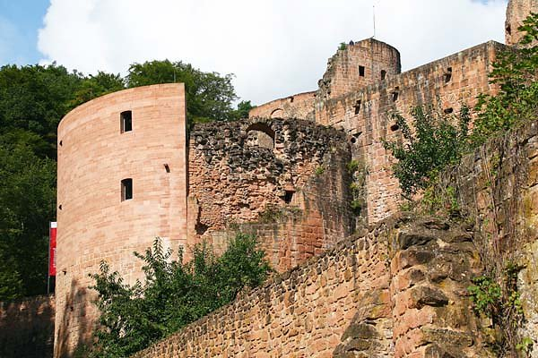 Schloss-und-Festungsruine-Hardenburg-356.jpg