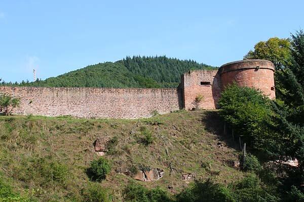 Schloss-und-Festungsruine-Hardenburg-358.jpg