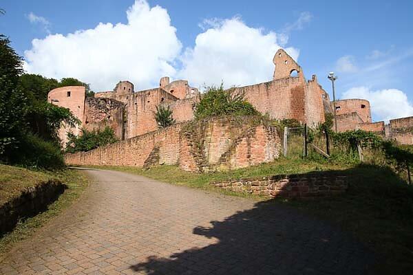 Schloss-und-Festungsruine-Hardenburg-359.jpg