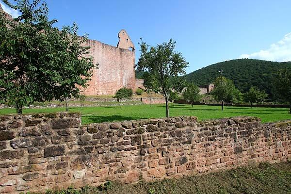 Schloss-und-Festungsruine-Hardenburg-360.jpg