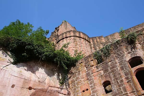 Schloss-und-Festungsruine-Hardenburg-365.jpg