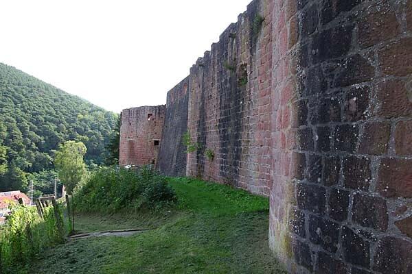 Schloss-und-Festungsruine-Hardenburg-367.jpg