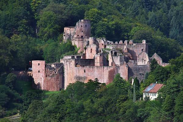 Schloss-und-Festungsruine-Hardenburg-368.jpg