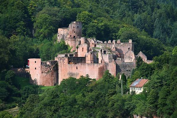 Schloss-und-Festungsruine-Hardenburg-369.jpg