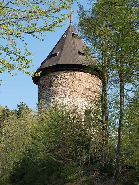 Burguine-Weissenegg-55.jpg