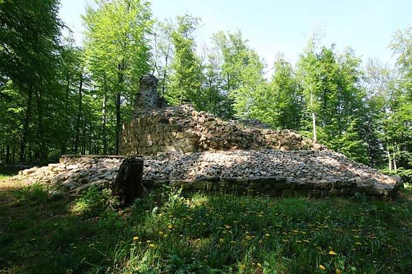 Burgruine Ried am Riederberg