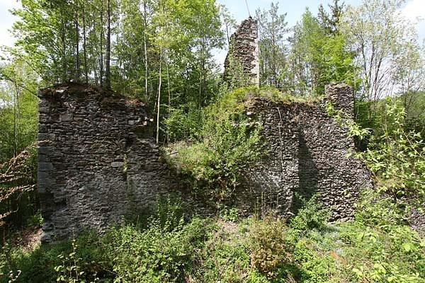 Ruine Stubenberg