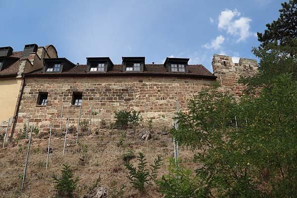 Burg-Schoenburg-4.jpg