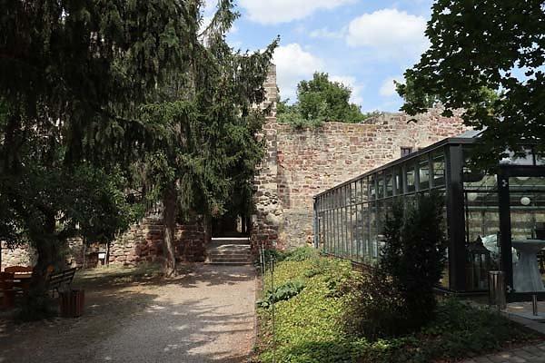 Burg-Schoenburg-26.jpg
