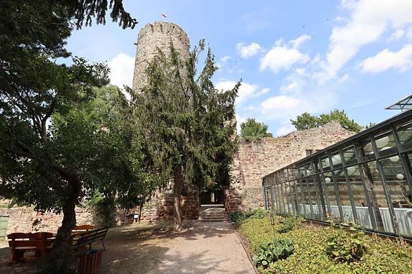 Burg-Schoenburg-28.jpg