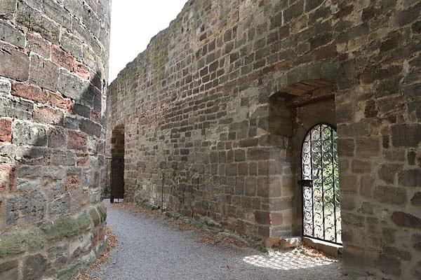 Burg-Schoenburg-46.jpg
