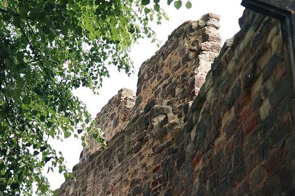 Burg-Schoenburg-55.jpg